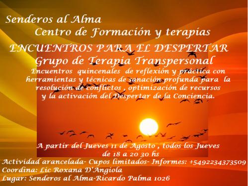 grupo terapia transpersonal